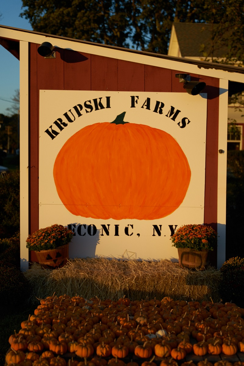 Krupski Farms pumpkin shed